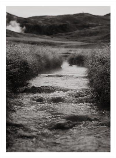 isländsk bäck med växter runtom i svartvitt