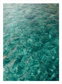 havsvatten som är grönt rakt uppifrån