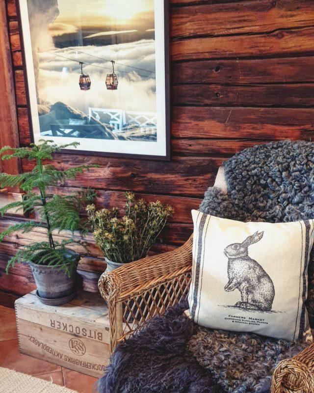 I ett hem med kaniner måste det ju finnas minst en kaninkudde. Eller hur? ❤🐇❤ . . #rabbit #husdjur #pets #petsoninstagram #countryhome #lantligt #livetpålandet #interiorinspo #inspo #lantligahem #landlig #interior #inredning #home #detaljer #details #lantligt #livetpålandet  #rabbitsoninstagram #pillows
